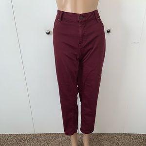 Vigoss Burgundy Jagger Skinny Jeans
